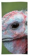 Fontana Turkey Portrait Beach Towel