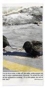 Food Critics Beach Towel by Sheri Lauren Schmidt