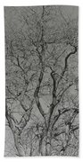 For The Love Of Trees - 2 - Monochrome  Beach Towel