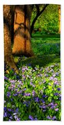 For Whom The Bells Toll Beach Towel