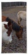 Foraging Horses Beach Towel