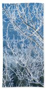 Foreground Frost Beach Towel