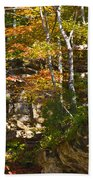 Forest Above The Cave Beach Towel