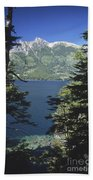 Forest And Lakes Lanin National Park Beach Towel