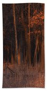 Forest At Sunset Beach Towel
