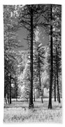 Forest Black And White Beach Towel