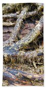 Forest Fingers Beach Towel