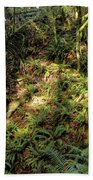 Forest Floor Beach Towel