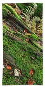 Forest Floor Fungi And Moss Beach Towel