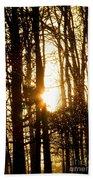Forest Flurry Lightscape  Beach Towel