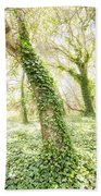 Forest Glow - The Magical Trees Of The Los Osos Oak Reserve Beach Towel