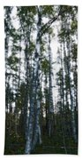 Forest II Beach Towel