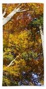 Forest In Autumn Bavaria Beach Sheet