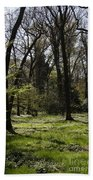Forest In Spring Beach Towel