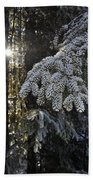 Forest In Winter Beach Towel