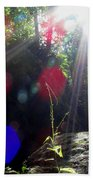 Forest Lightscape Beach Towel