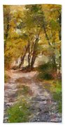 Forest Path Beach Towel