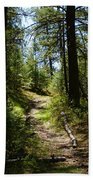 Forest Path In Spokane 2014 Beach Towel