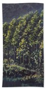 Forest Reflections Beach Towel