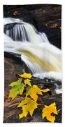 Forest River In The Fall Beach Towel by Elena Elisseeva