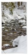 Winter Forest River Beach Towel