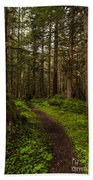 Forest Serenity Path Beach Towel