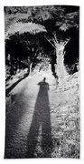 Forest Shadow Beach Towel by Les Cunliffe