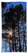 Forest Sunset Beach Towel