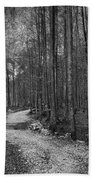 Forest Trail Bw Beach Towel