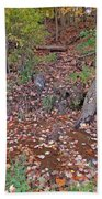 Forest Trickle Beach Towel