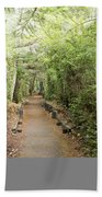 Forest Walk Beach Towel