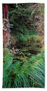 Forest Wetlands II Beach Towel