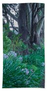 Forested Path Beach Towel