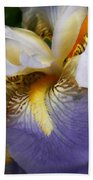 Forever Iris  Beach Towel