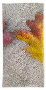 Four Autumn Leaves Beach Towel