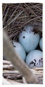 Four Red-winged Blackbird Eggs Beach Towel by J McCombie