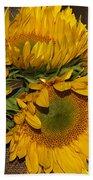 Four Sunflowers Beach Towel