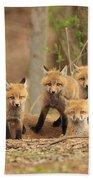Fox Family Portrait Beach Towel