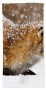 Fox First Snow Beach Towel