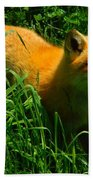 Fox Trot Beach Towel