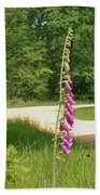 Foxgloves In New Forest Beach Towel
