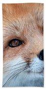 Foxy Lady Beach Towel by Bianca Nadeau