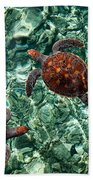Fragile Underwater World. Sea Turtles In A Crystal Water. Maldives Beach Towel by Jenny Rainbow