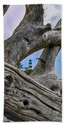 Framed Lighthouse Beach Towel by Robert Bales
