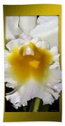 Framed White Orchid Beach Towel