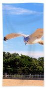 Frequent Flyer Beach Towel