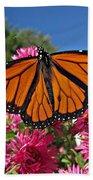 Fresh Monarch Butterfly Beach Towel