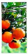Fresh Orange On Plant Beach Towel
