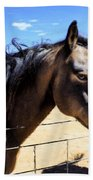 Working Horse Beach Towel