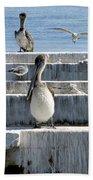 Pelican Friends Beach Towel
